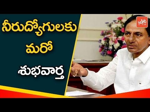 Employment Card Application Form Telangana Online | How to Apply Employment Card | YOYO TV Channel