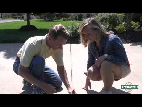 PetSafe® Containment Tips from the Pros