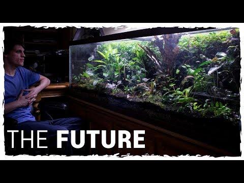 The Future of My 125g Vivarium
