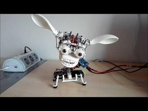 Fully 3D printed animatronic head