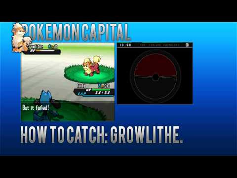 How To Catch? #1 : Growlithe / Pokemon Black and White 2