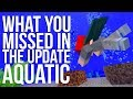 What You Missed in the Update Aquatic