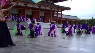 薬師寺 奈良市役所チーム 八重櫻 (バサラ祭り2013)
