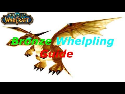 [WoW] Bronze Whelpling Farming Guide(Tutorial)! 10k Gold Per Hour! 6.0.2