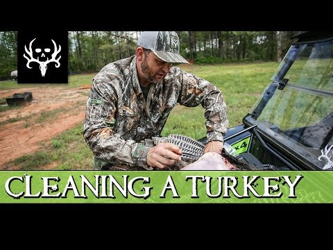 How to Clean a Turkey the EASY WAY!