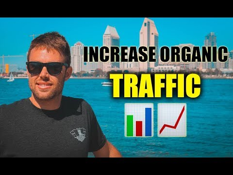 How To Increase Organic Traffic   The Spider Web Method