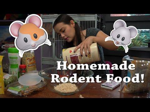 DIY Rodent Mix   Homemade Food