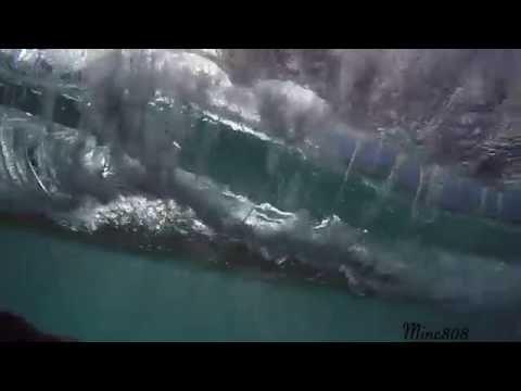 Minc808 Crisp Clean Barrels & VORTEX | Wave Visuals Pt 2 |