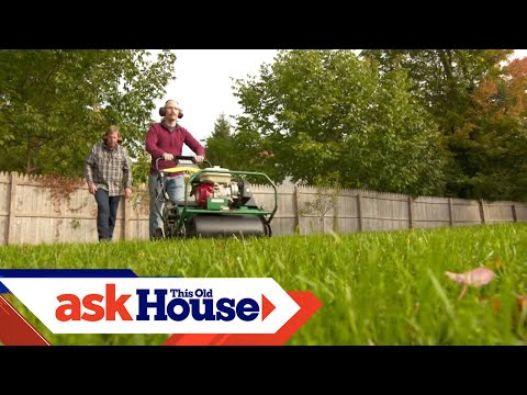How to Revitalize a Lawn