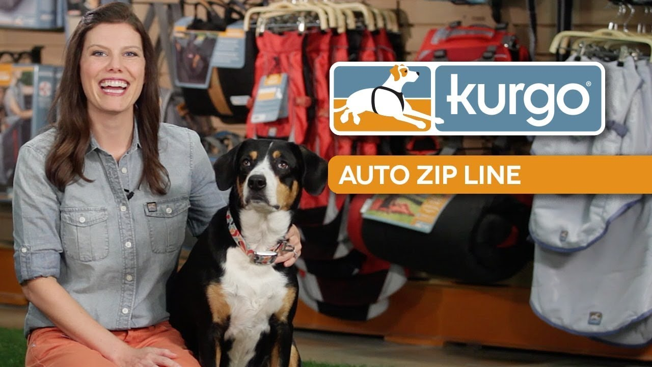 How to Use the Kurgo Auto Zip Line for Dogs