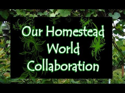 Our Homestead World - US- Washington State