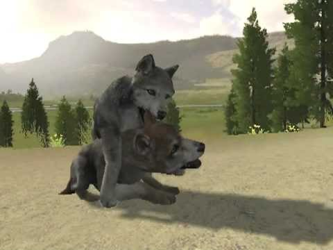OMG WolfQuest 2: Slough Creek Pups + More!!!!