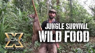 Living off the Jungle, Wild Foods Tour