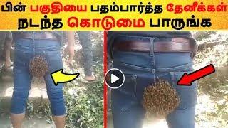 பின் பகுதியை பதம்பார்த்த தேனீக்கள் நடந்த கொடுமை பாருங்க Tamil News | Latest News | Viral