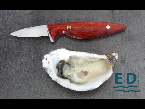 Prettiest oyster knife in the World?