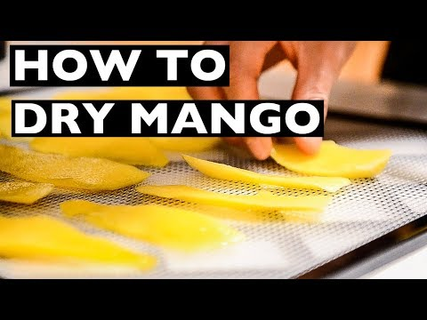 VEGAN rev Cooking Tips - How to Dry or Dehydrate Mango Slices! - EP1