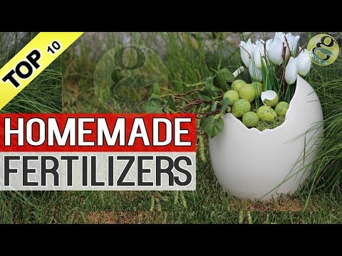 HOMEMADE ORGANIC FERTILIZERS For Plants in Garden Tips | How to make fertilizer at home