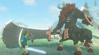 Ultimate Challenge #1| Defeat The Strongest Lynel with 20,000HP - Zelda Breath of the Wild