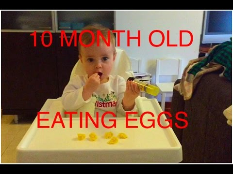 10 MONTH OLD BABY EATING EGGS - BLW with EMMI
