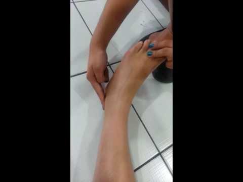 dorsalis pedis pulse and posterior tibialis pulse