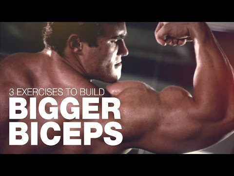 3 Best Exercises To Build Bigger Biceps with Calum Von Moger