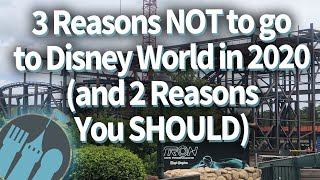 3 Reasons NOT to go to Disney World in 2020, and 2 Reasons You SHOULD