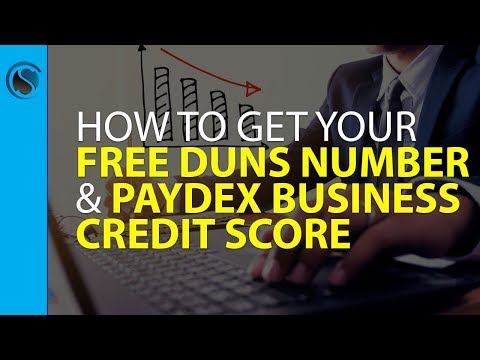 Periscope...How to Get Your FREE DUNS Number and Get Your Initial Paydex Business Credit Score