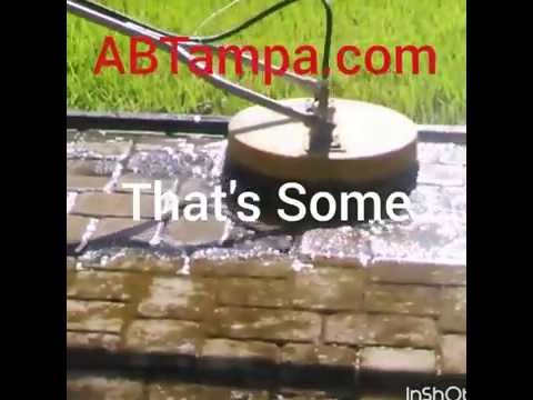 Algae On brick pavers