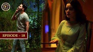 Hassad Episode 18 |  Minal Khan | Top Pakistani Drama