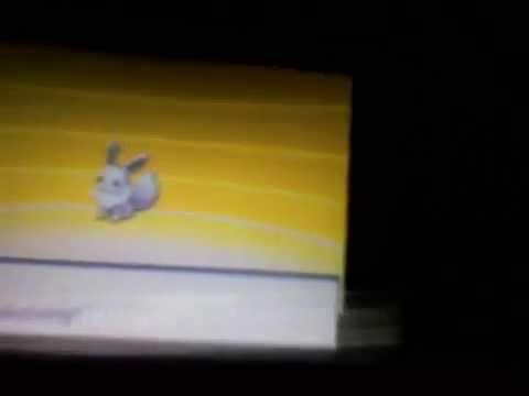Shiny Eevee evolving to shiny Espeon in pokemon black