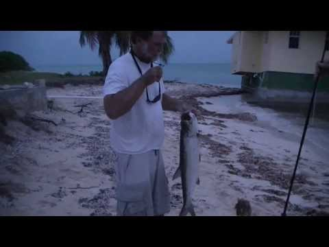 British Virgin Islands Tarpon and Flyfishing