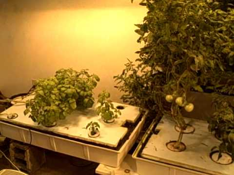 Homemade Hydroponics - How to make a hydroponic grow room