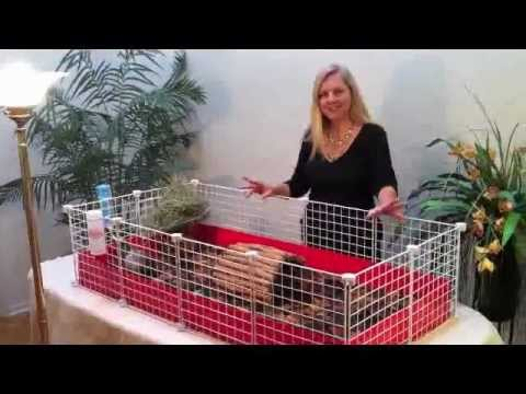 Guinea Pig Cages - Fleece Flippers™ - An Introduction
