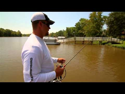 Understanding Crawfish Color Transitions in Bass Fishing