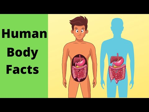 6  human body facts that most people don't know