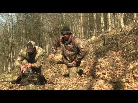 Spring Gobbler 2016 in the Southwest Virginia Mountains