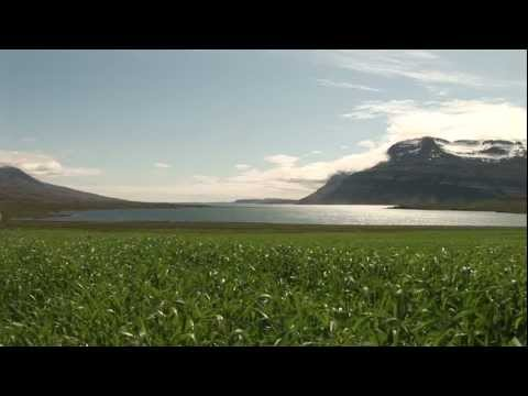 World Harmony Run Iceland 2011