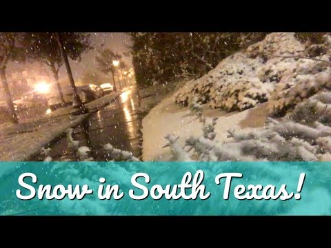 A Wintery Wonderland in South Texas | Elise Ever After