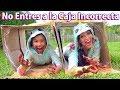 No ENTRES a La CAJA INCORRECTA ft SANDRA CIRES   TV Ana Emilia