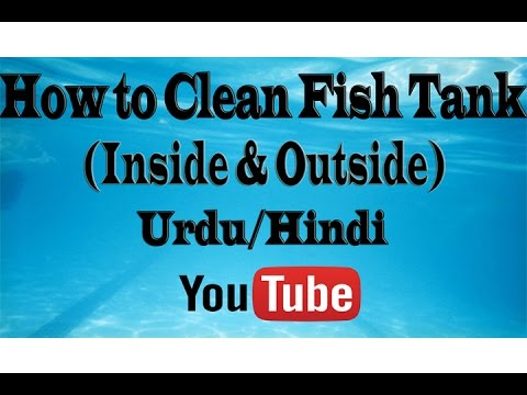 How to Clean Fish Tank (inside & outside) Urdu/Hindi