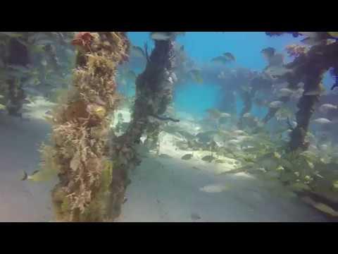 SDG Flaglers barge 2