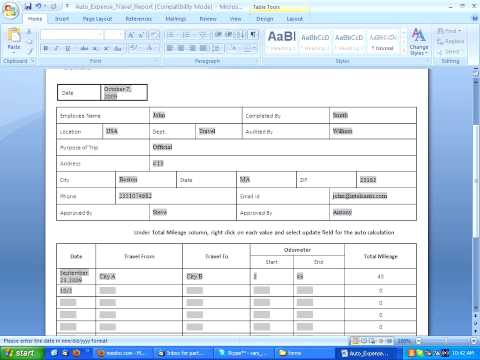 How to fill an Auto-Calculating Travel Report Form