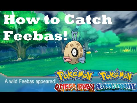 Pokemon Omega Ruby and Alpha Sapphire HOW TO CATCH/FIND FEEBAS!