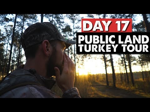 LAST DAY ON MISSISSIPPI PUBLIC LAND! - Turkey Tour Day 17