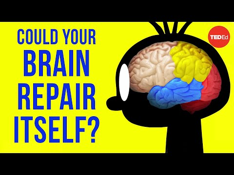 Could your brain repair itself? - Ralitsa Petrova