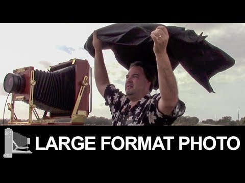 Ilford Delta 100 – Large Format Film Photography
