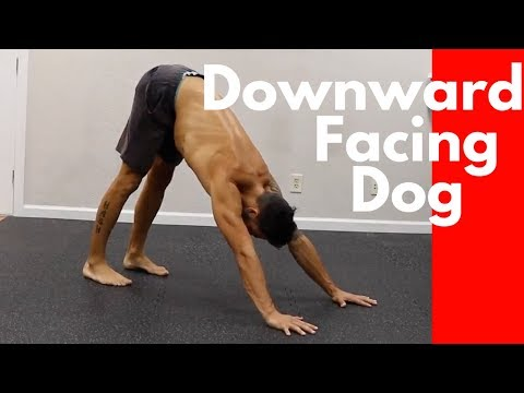 How to Downward Facing Dog (A Frame Position)