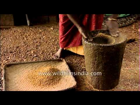 Traditional process of husking rice - South India
