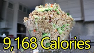 12.5lb Fried Rice Challenge