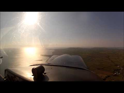 Beagle Pup Flight
